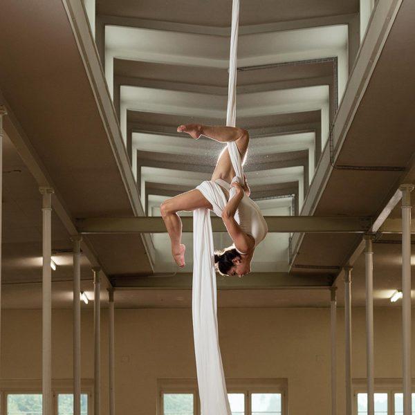 Sportfotografie: Akrobatik im Vertikaltuch - Fotograf Andrea Scavini (goldgelb)