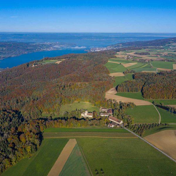 Professionelle Luftbildnahmen Thurgau Untersee