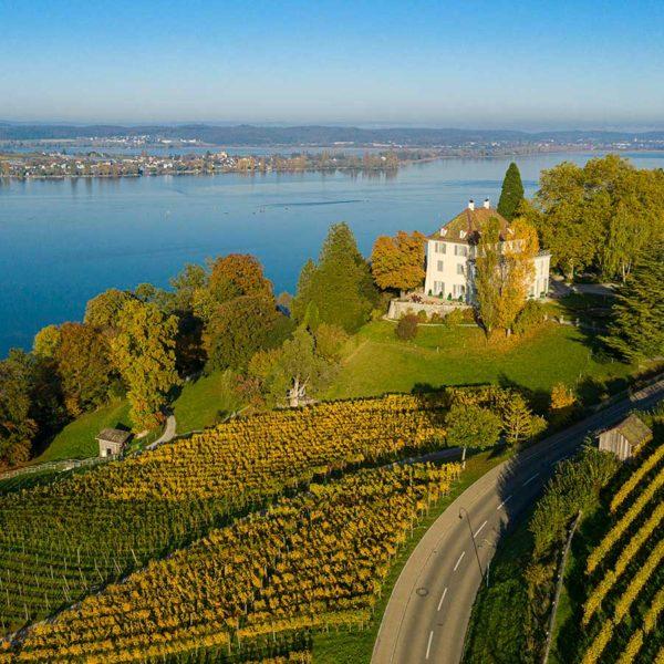 Luftbildaufnahme Schloss Arenenberg mit Untersee